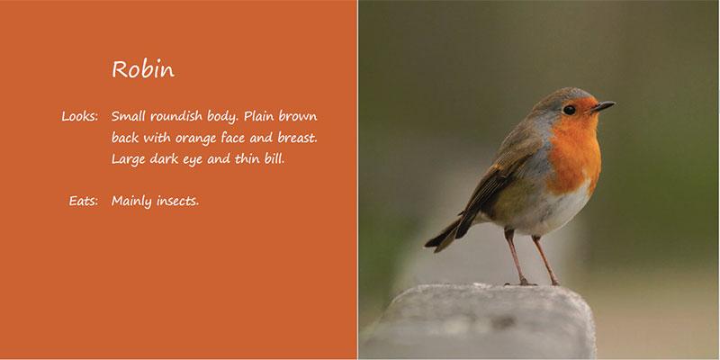 bird-book01