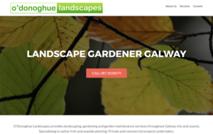 odonoghue-landscapes