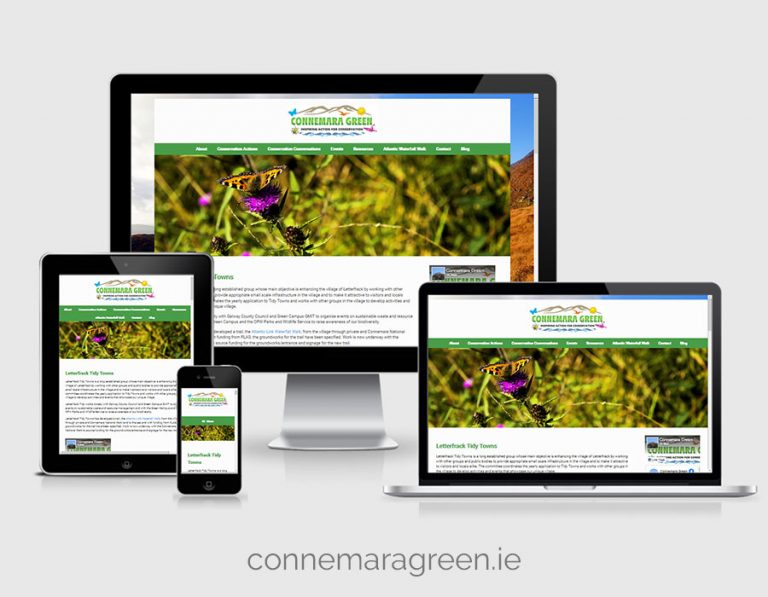 Read more about the article Connemara Green