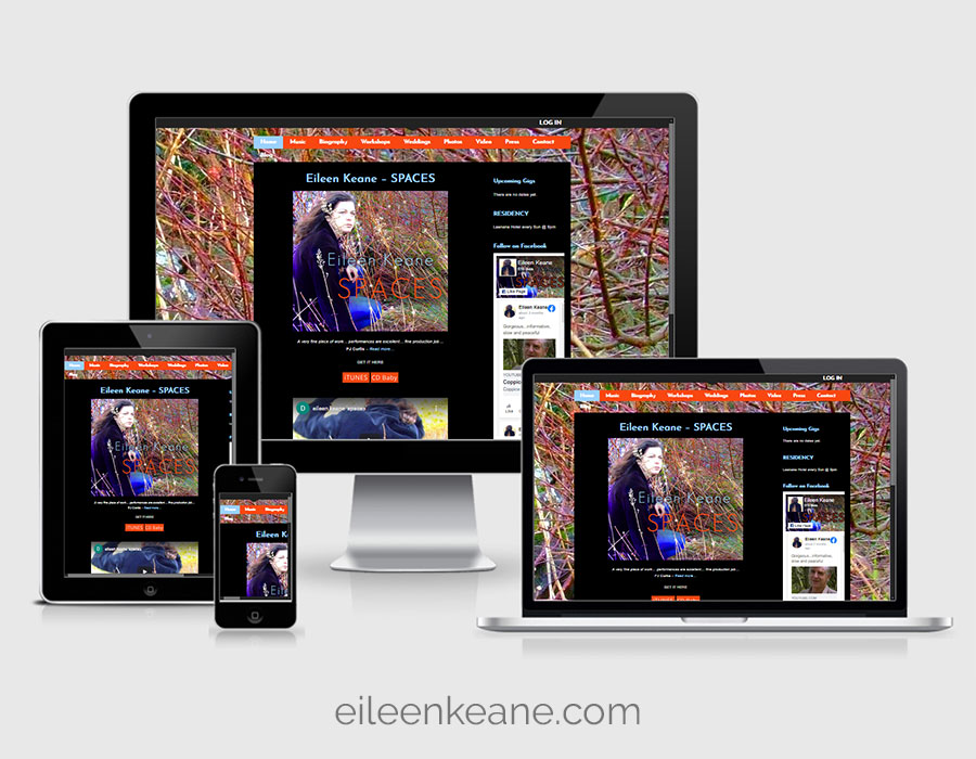 Website Design - Eileen Keane